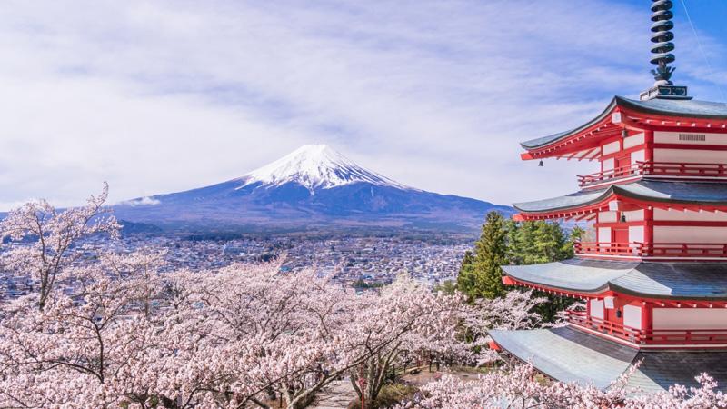 Cara Membuat Visa Waiver Jepang Dengan Mudah dan GRATIS!!!