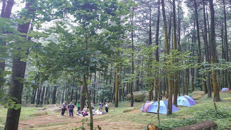Wisata Alam Di Bogor