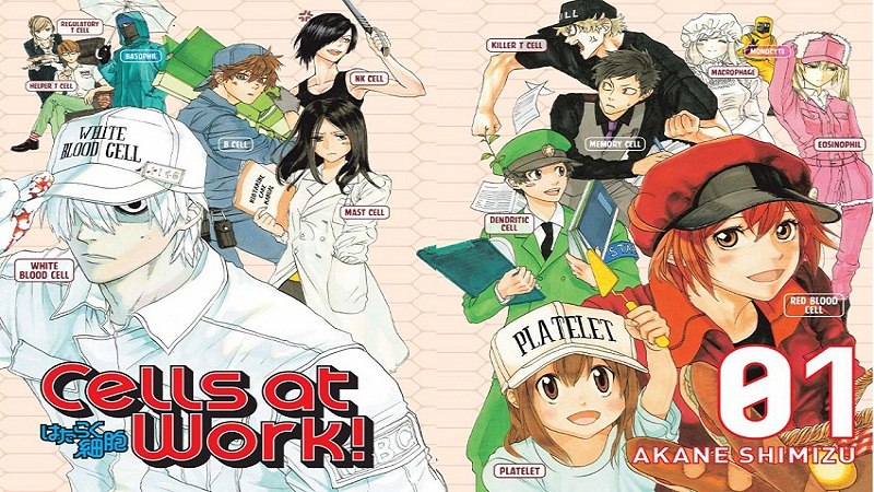 Bermanfaat, ini 7 Anime Edukatif yang Mencerdaskan Kita!