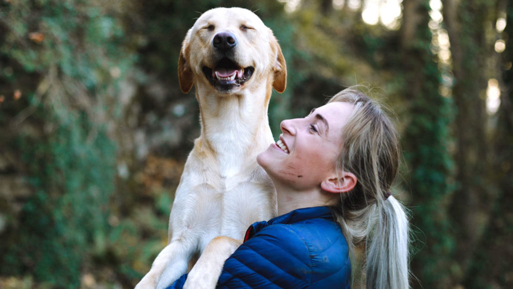 6 Jenis Anjing Setia untuk Menemanimu di Rumah Selama Pandemi!