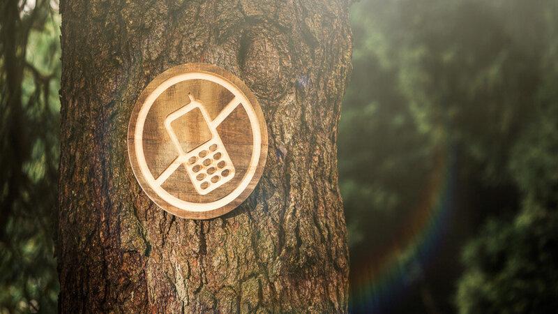 Apa itu Detoksifikasi Digital?